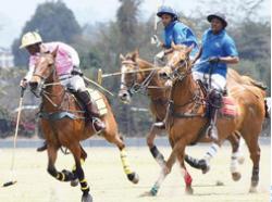 Chairman's Cup at Nairobi Polo Club show