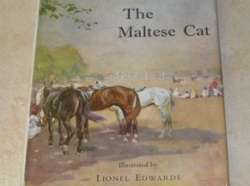 Why The Maltese Cat?