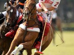 Sugar Erskine Charity Polo Clinic to Benefit Horses Healing Hearts