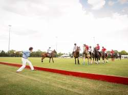 The Houston Cup