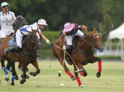Gustavo Yanez Polo Horses